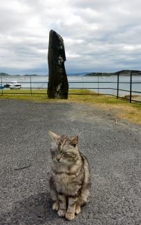 Jura cat