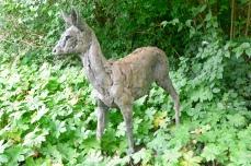 Roe Deer by Hamish Mackie, bronze, 2013.