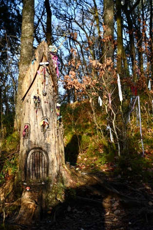 Fairy houses on Doon Hill
