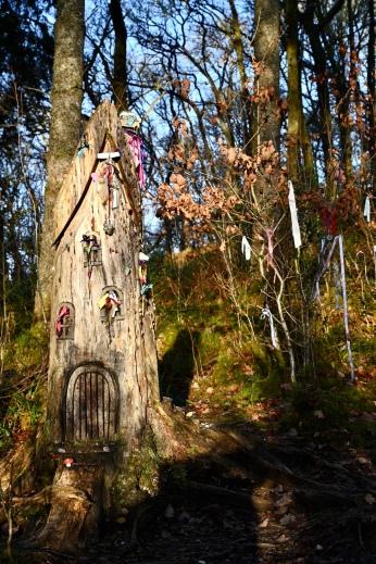 Fairy houses on Doon Hill