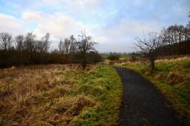 Cleddans Burn path