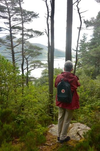 Lochalsh Woodland Walks