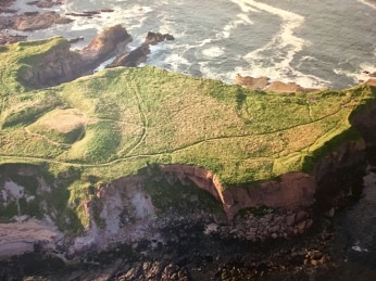 Eyemouth fort from the air