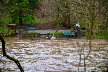 River Kelvin Feb 2020
