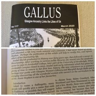 Gallus article