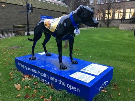 Black Dog campaign