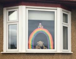 Rainbow and teddy