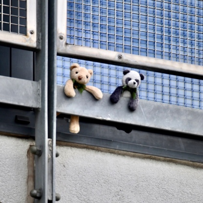 Glasgow Harbour bears