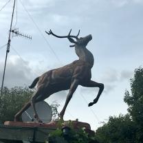 Prancing stag
