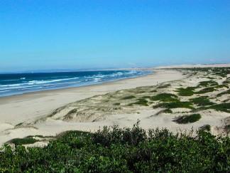 Mount N Beach sand dune safari