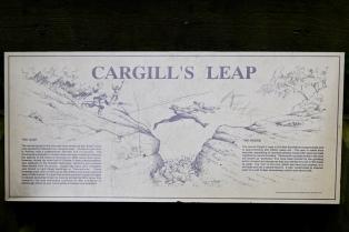 Cargill's Leap