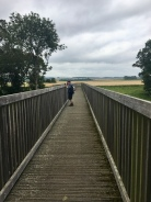 Kitty Swanson's Bridge