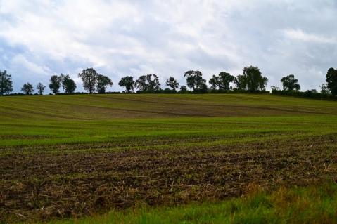 Near Stormont Loch