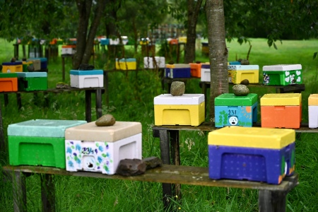 Honey farm