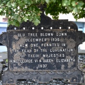 Commemorative tree plaque