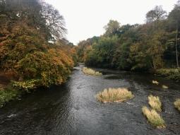 River Kelvin in autumn