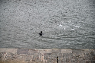 Cellardyke swimmer