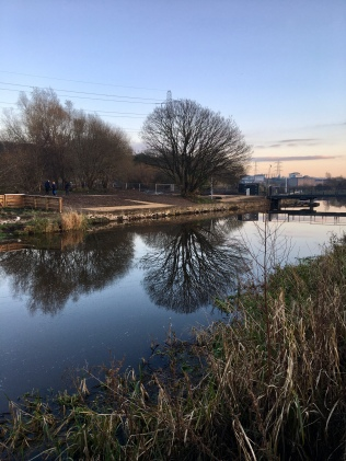 Forth and Clyde Canal reflections