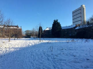Anniesland Court from Anniesland Meadow