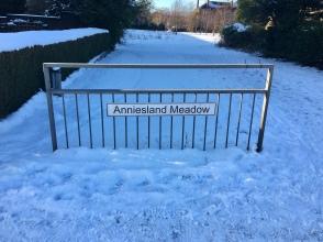 Anniesland Meadow