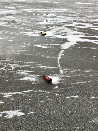 Frozen canal and Buckie bottle