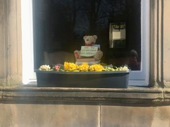 Kelvinside teddy bear