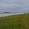 Machair at SouthUist